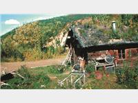 501_the_old_pioneer_trail.jpg
