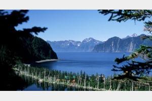 72_lodge_kenai_fjords_wilderness_lodge.jpg
